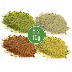 Malý Kratom Test Pack – Green, Red, White, Yellow (4 x 25g)